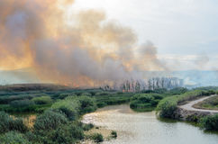 Fire caused by the destruction  humans. Fire caused by the destruction by humans in Spain Royalty Free Stock Images