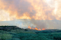 Fire caused by the destruction  humans. Fire caused by the destruction by humans in Spain Royalty Free Stock Image