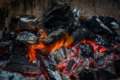 Fire on charcoal. Royalty Free Stock Photo