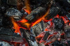 Fire on charcoal for food grilling. Stock Photography