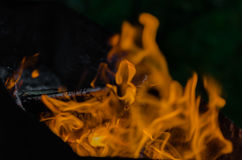 Fire, charcoal, temperature, flame, embers, burning, wood, bonfire, ash, campfire, orange, yellow Royalty Free Stock Photo