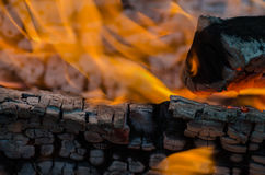 Fire, charcoal, temperature, flame, embers, burning, wood, bonfire, ash, campfire, orange, yellow Royalty Free Stock Images