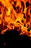 Fire close up Royalty Free Stock Photos