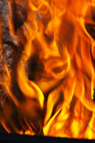 Fire close-up Royalty Free Stock Image