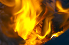 Fire close-up Royalty Free Stock Photography