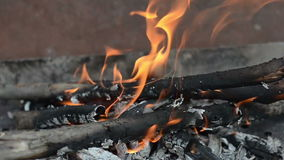 Fire close-up stock footage