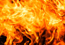 Fire closeup as background Royalty Free Stock Images