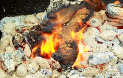Fire. Closeup of pile  wood burning with flames Royalty Free Stock Image