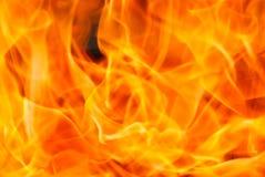 Fire closeup yellow orange flames royalty free stock image