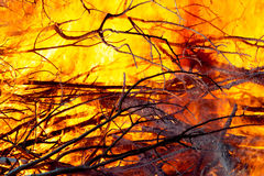Fire closeups Royalty Free Stock Photos