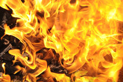 Fire with coal Royalty Free Stock Images