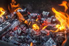 Fire&Coal. Picnin in Voronezh, photo fire and coal, in mangal Royalty Free Stock Photo