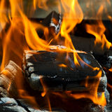 Fire on coals Stock Image