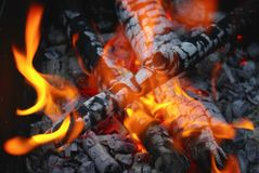 Fire and coals. Bright flame in the bonfire. Selective focus royalty free stock photography