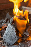 Fire and Coals Close Up. Burning Fire Bright Flames. Hot Charcoal Briquettes Stock Photography