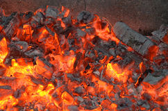 Fire coals Stock Images