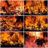 Fire collage Stock Photo