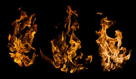 Fire collection Stock Photography