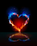 Fire collection Heart, love concept Royalty Free Stock Photography