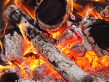 The Fire. Colors of wood burning Stock Photography