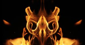 Fire creature Stock Images