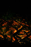 A fire in the dark Royalty Free Stock Images