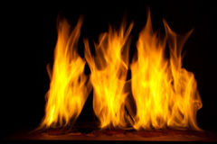 Fire on a dark background Stock Photos
