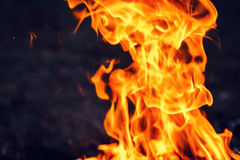 Fire in the dark copyspace Royalty Free Stock Photography