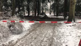 Winter with a lot of snowfallFire department barricade in front of a crime scene in the forest stock video footage