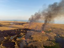 Fire destroys the fields of dry reeds along the shore of the sea. Bird`s eye view.  Stock Image