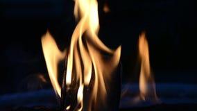 Fire stock video