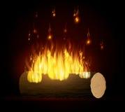 Fire digital design. Fire digital design, vector illustration eps 10 Royalty Free Stock Photos
