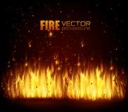 Fire digital design. Fire digital design, vector illustration eps 10 Stock Image