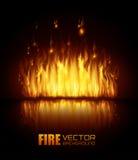 Fire digital design. Fire digital design, vector illustration eps 10 Royalty Free Stock Images