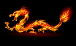 Fire Dragon. Dragon. Abstract fiery Illustration on black background for design Vector Illustration