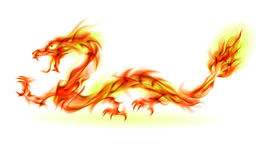 Fire Dragon. Dragon. Abstract fiery Illustration on white background for design Vector Illustration
