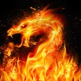 Fire Dragon. Abstract Fire Dragon Head. Illustration on Black Background with Sparks royalty free illustration
