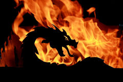 Fire dragon Royalty Free Stock Photos
