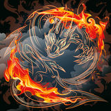 The fire dragon Stock Photo