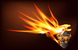 Fire Dragon and Skull Royalty Free Stock Photography