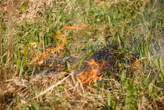 Fire on dry grass in the spring Stock Photography