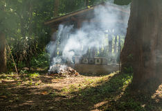Fire of dry leaf. With smoke in the forest Stock Photography
