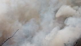 Fire at the dump in, Illegal burning of waste in violation of environmental norms stock footage
