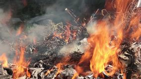Fire at the dump in, Illegal burning of waste in violation of environmental norms stock video footage