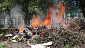 Fire at the dump in, Illegal burning of waste in violation of environmental norms stock video