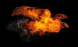 Fire Eagle. Isolated on the Black Background. Computer Graphics Stock Photos