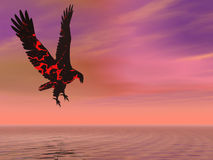 Fire Eagle Hovering. Over the sea Royalty Free Stock Photo