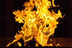 Fire element bright fire close up royalty free stock photo