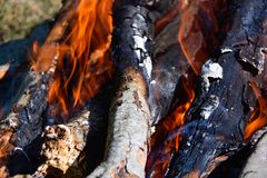 Bonfire and ember Stock Images