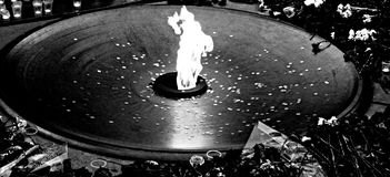 Fire. The eternal flame in the memory of the fallen soldiers Stock Photography